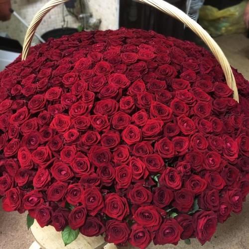 Купить на заказ 1001 роза с доставкой в Аральске