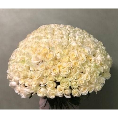 Купить на заказ 201 роза с доставкой в Аральске
