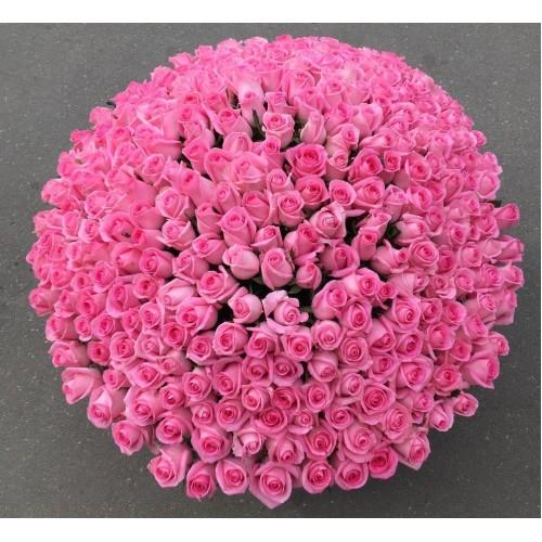 Купить на заказ 501  роза с доставкой в Аральске