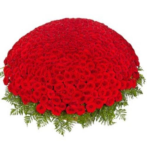 Купить на заказ 301  роза с доставкой в Аральске